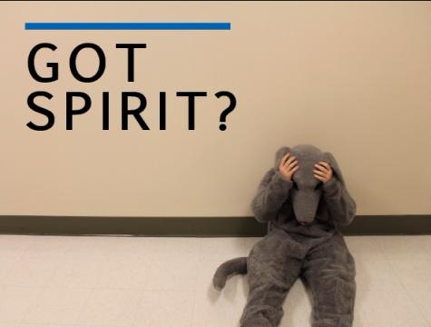 Got Spirit?