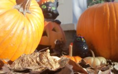 As October comes to an end, Halloween marks the beginning of the holiday season.  Pumpkins, skeletons and ghosts are popping up around Clayton in preparation for tomorrow night.