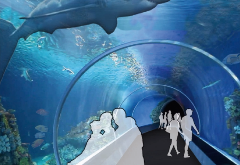 Concept design of an underwater area of the aquarium. (Photo from Lodging Hospitality Management).