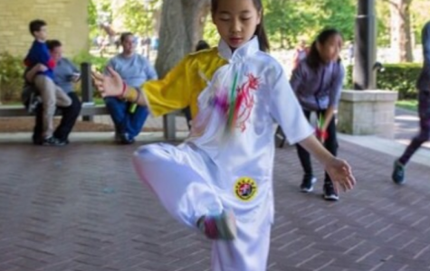 Chinese Cultural Festival