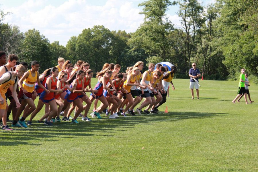 The+Greyhounds+prepare+to+run+just+seconds+before+the+start+of+their+race+at+the+Principia+Invitational.