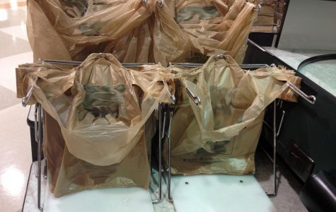 Plastic grocery bags like these are one of the biggest contributors to pollution.