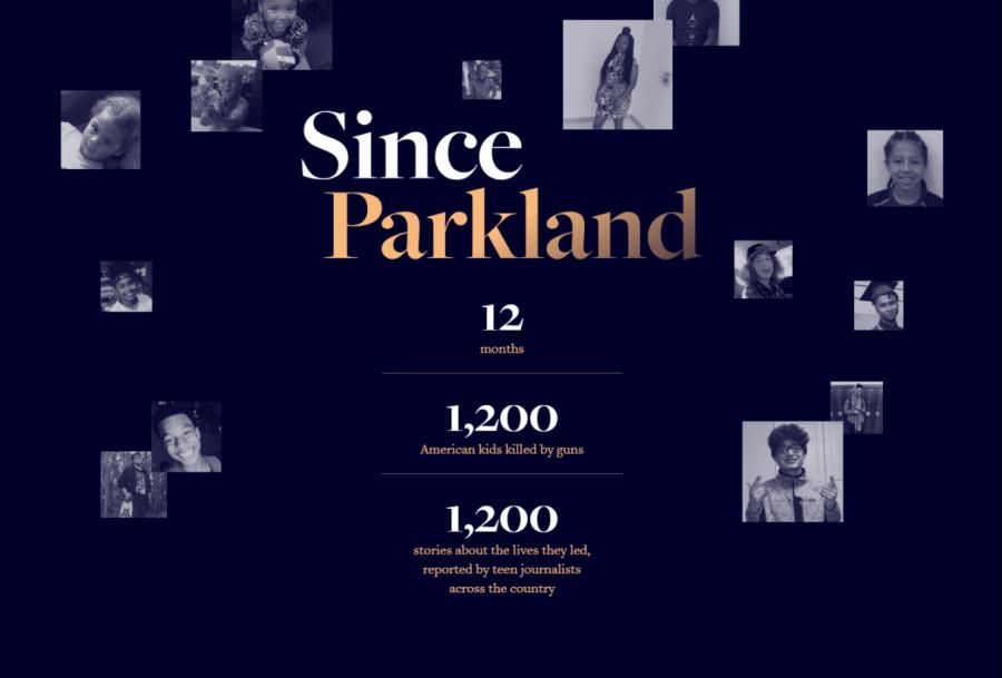 #SinceParkland