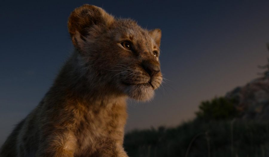 Simba in the 2019 remake of