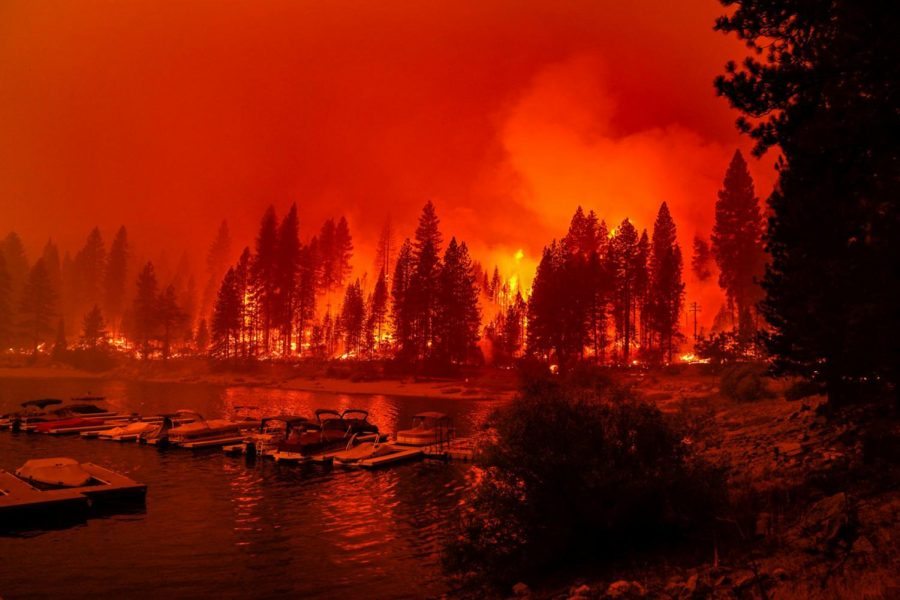 Firefighters conduct a back burn operation along CA-168 during the Creek Fire as it approaches the Shaver Lake Marina on Sunday, Sept. 6, 2020 in Shaver Lake, CA