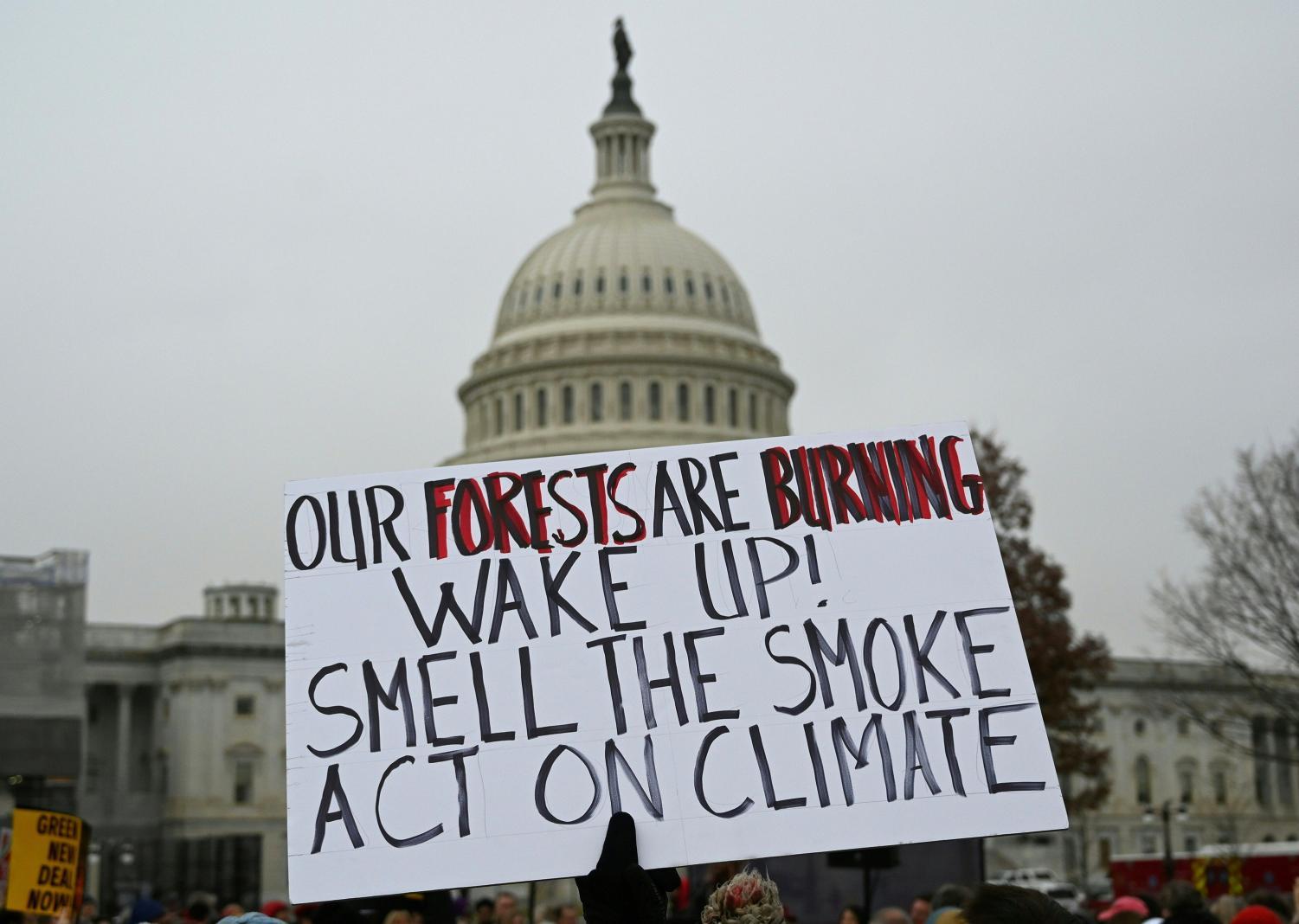 The Politics of Climate