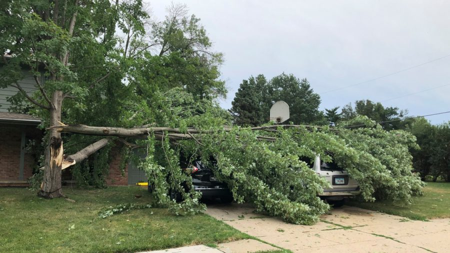 A tree fell across vehicles at a home in West Des Moines, Iowa, after a severe thunderstorm moved across Iowa on Monday Aug. 10, 2020, downing trees, power lines and damaging buildings.