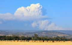 The Dixie fire in Plumas and Butte counties forms a massive cloud.  In July, the fire surpassed 100,000 acres, becoming the second California wildfire in 2021 to ever pass this milestone.